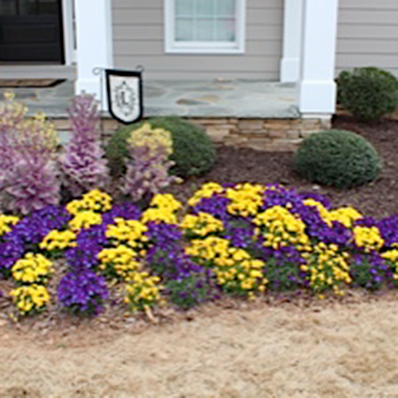 Our Work Outdoor Effects Landscaping